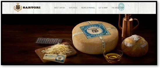 威斯康星州萨托里公司官方网站截图