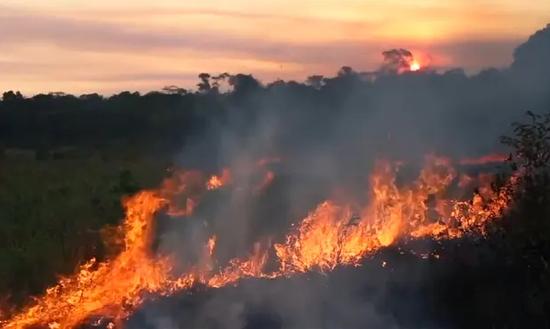马克龙要G7重点讨论亚马逊大火被巴
