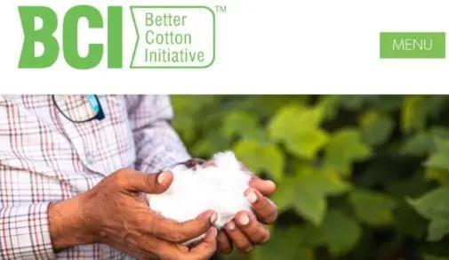 瑞士良好棉花发展协会(BCI)因被曝抵制中国新疆棉花而火爆全网。来源:GJ