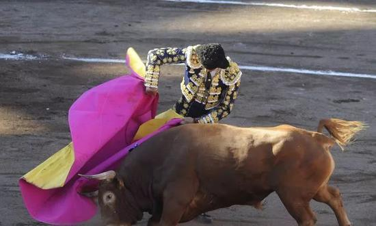 【蜗牛棋牌】斗牛士杀死公牛前为它擦泪 斗牛精神还是虐待狂?
