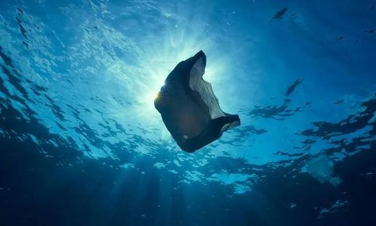 塑料袋在蓝色海洋中漂流 图片来源:BBC纪录片截图