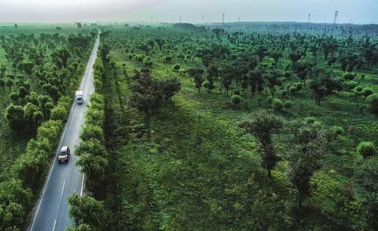 """三北防护林工程、全国性退耕还林还草工程,以及陕西省开展的天然林保护工程和全面治理荒沙行动,陕西毛乌素沙漠的生态环境得到了极大改善,沙漠南缘实现从""""沙进人退""""到""""绿进沙退""""的转变。"""