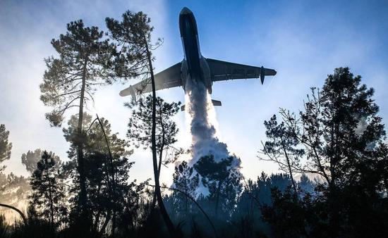 俄罗斯组建航空队灭火 (图源:塔斯社)