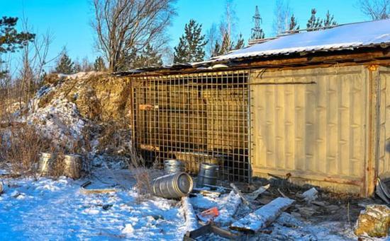 谢尔盖把沃纯养在笼子里(图源:太阳报)