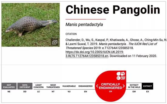 中华穿山甲在 IUCN 红色名单的等级