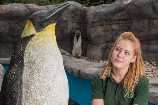 图为28岁的管理员艾玛·霍顿(Emma Horton)与其中一只替身塑料企鹅合影。