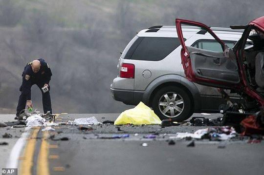 据《洛杉矶时报》报道,2010年,17岁的她在圣贝纳迪诺少年法庭被判酒后驾车。