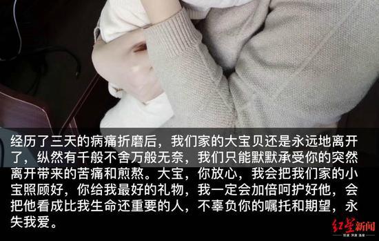 武汉解封第1天 黄鼠狼街上不避行人主动乞食