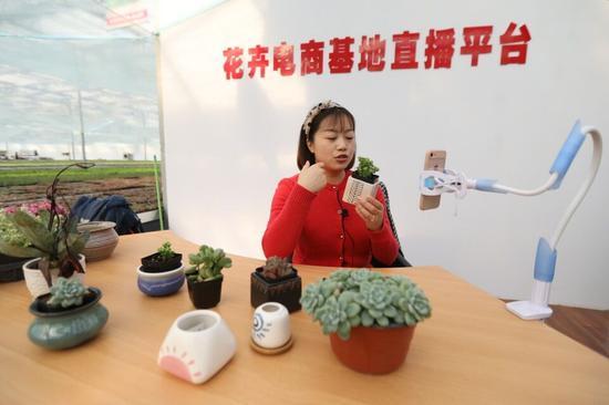 创业园内的工作人员在进行花卉电商直播。
