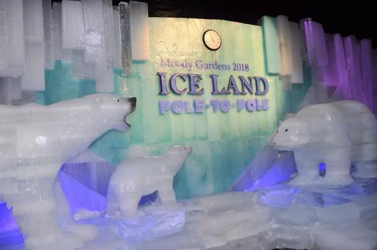 图为北极熊冰雕。(新华社记者刘立伟摄)