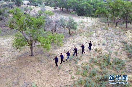 在甘肃省武威市古浪县八步沙林场,场长郭万刚(左一)和大家一起前往治沙点(8月23日无人机拍摄)。新华社记者 范培珅 摄