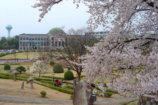 ▲庆北大学。图据网络