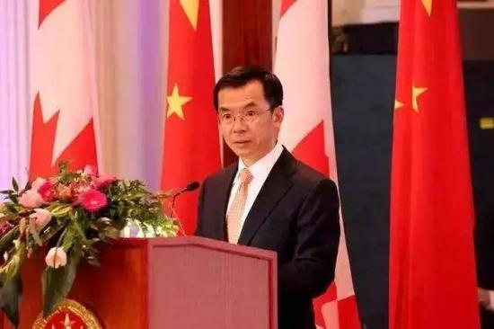 中国驻添大使卢沙野