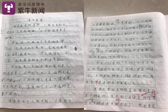 胡博文的作文《我的爸爸》