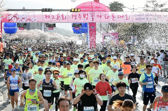 4月6日韩国庆州举行的樱花马拉松比赛(韩国《中央日报》)