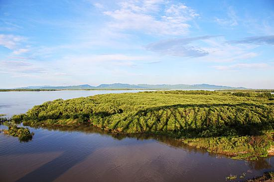 ▲中俄首座跨黑龙江铁路桥同江大桥横跨一个小岛。(6月4日摄)本报记者谢锐佳摄