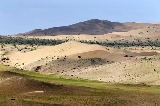 ▲今年雨水多,8月莫高窟附近戈壁沙漠泛起绿意。(敦煌研究院供图 孙志军 摄)