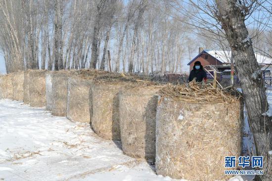 1月15日,在黑龙江省绥化市望奎县后三乡厢白七村,巡逻员在村头值班。新华社发(张涛 摄)