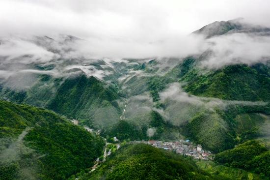 这是2021年5月18日拍摄的武夷山国家公园腹地的原始森林与村落(无人机照片)。新华社记者 姜克红 摄