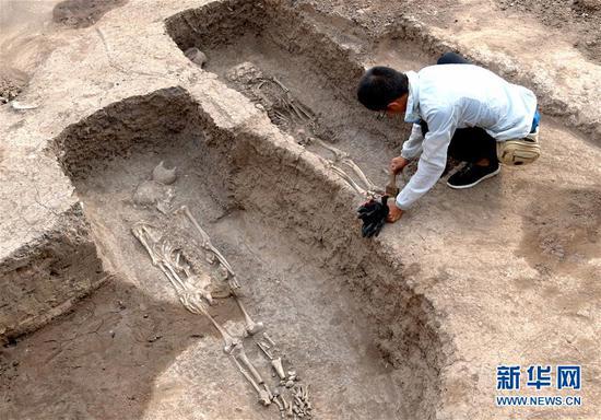做事人员在修整河南省安阳市洹北商城发现的商代铸铜工匠家族墓地(6月5日摄)。新华社记。者 李安 摄
