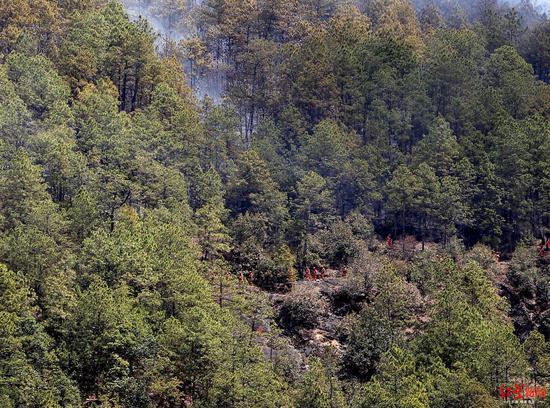 冕宁县森林大火扑火现场,消防队员穿过火场