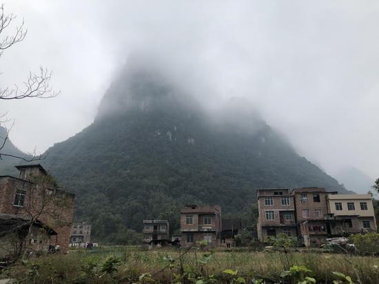 覃志钢的老家在广西河池一个冷僻的小乡下,距离镇子15公里,全村只有24户。新京报记者王翀鹏程摄