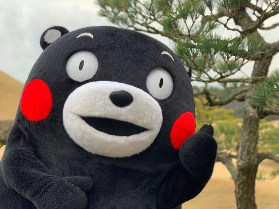 熊本熊落选东京奥运火炬手 原因有点好笑_德国新闻_德国中文网