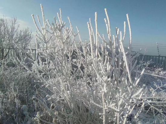 房山区百花山雪景