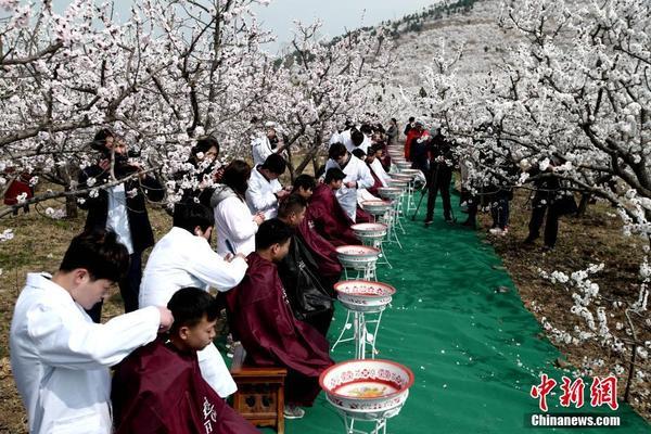 表新年贺词北京市监狱被害案今开薄荷水果金正