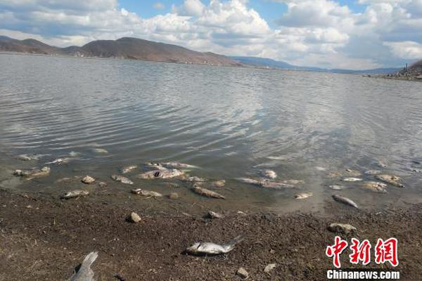 爱琴海论坛视频:又一家天津企业被指涉嫌传销 受害家属: