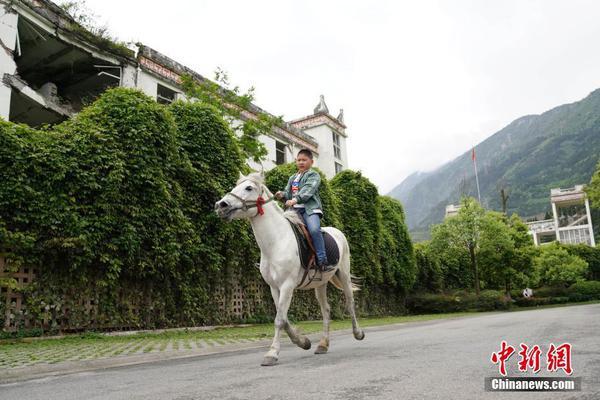 北京赛车历史记录手机版