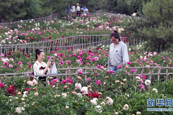 阿布扎比王储:阿联酋愿向中国提供一切支持