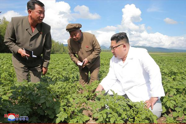 外交部:中方希望朝美双方尽快恢复对话并谈出结果