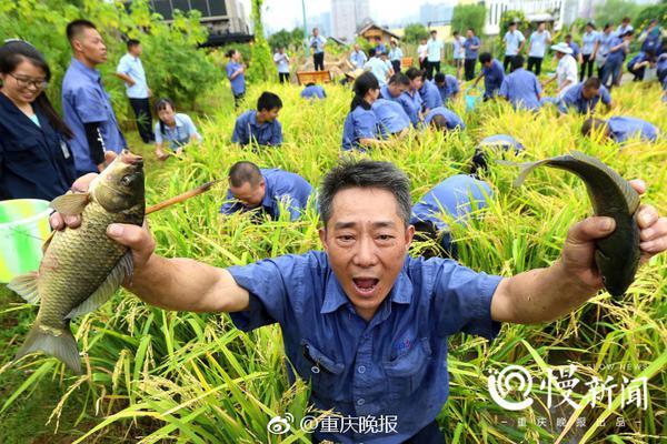 北京通報郭某思曾多次減刑情況 已成立聯合調查組進行調查