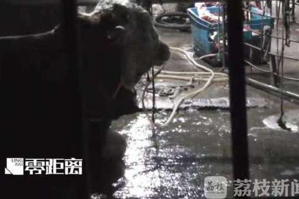 郑州警方通报女子不配合防疫把公交变专车:其有精神病史