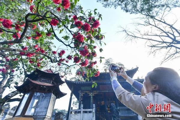 """浙江""""网红舞蹈教师被杀案""""二审维持原判,行凶者被判死刑"""