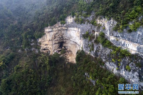 陕西六部门联动建立保护野生动物长效机制