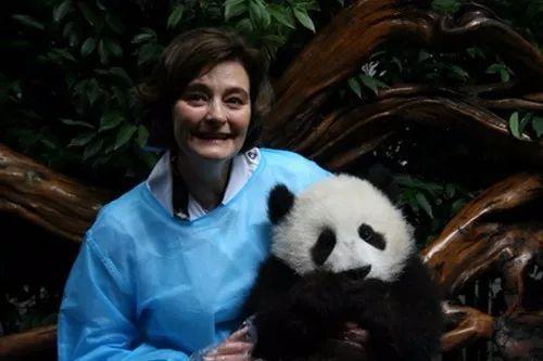 2011年,英国前宰衡布莱尔的夫人切丽·布莱尔与熊猫合影。