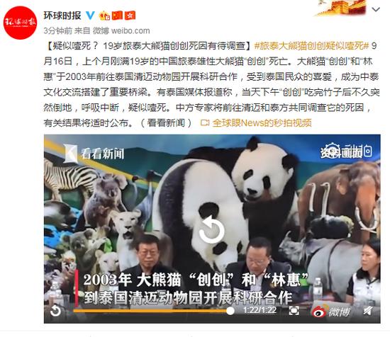 19岁旅泰大熊猫创创疑似噎死死因尚有待调查