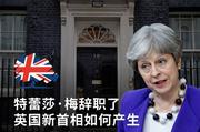特蕾莎·梅辞职后 英国新首相如何产生