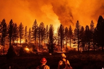美国加州山火持续