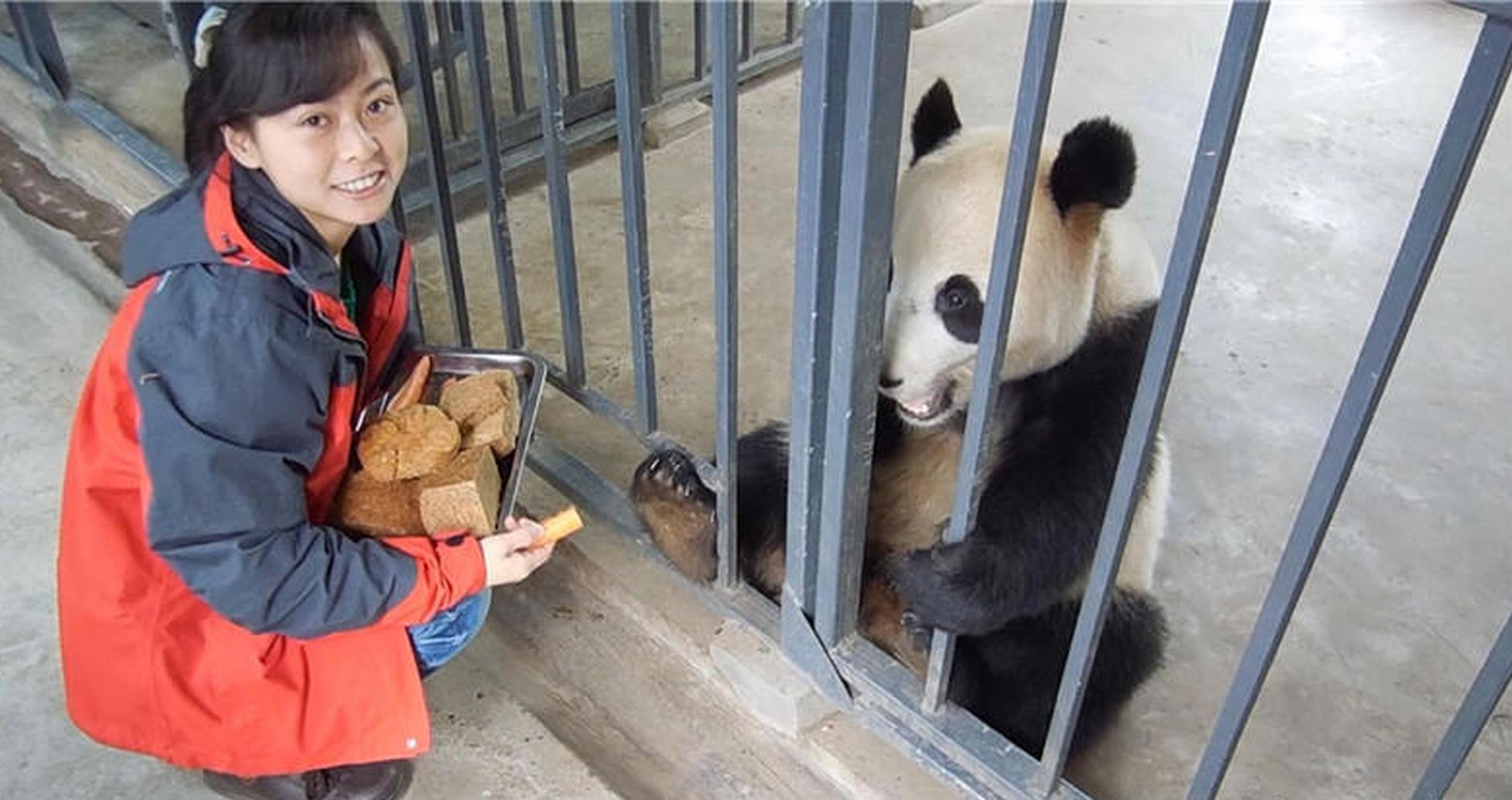 部中国人病率回升 明年工作民最有发言孟晚