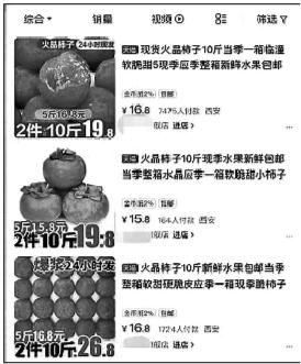 十月份才成熟的火晶柿子,在很多网店中都标注24小时发货
