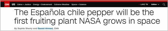 為登陸火星做準備 NASA擬在國際空間站種辣椒