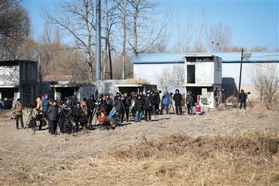 昨日,多多拍摄者在现场等候拍摄毛脚鵟。本版摄影/新京报记者 彭子阳