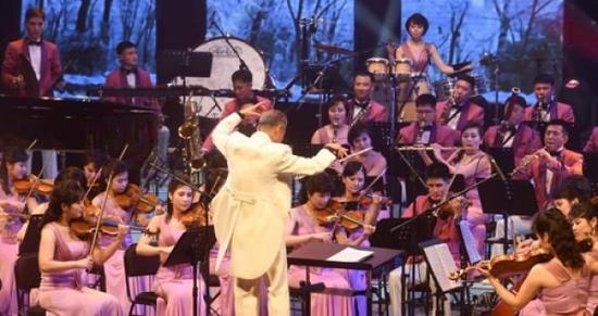 艺术团还带来了根据世界古典音乐改编的管弦乐演奏。