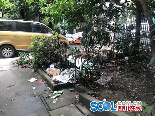 成都锦江区东怡园小区环境脏乱差续:5月中旬集中清理