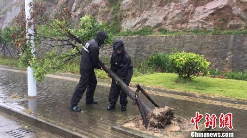 开什么店赚钱:未来三天 四川盆地东部和南部部分地区有暴雨
