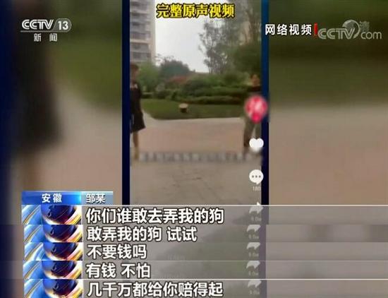 """央视还原""""徽州宴""""老板娘遛狗纠纷事件"""