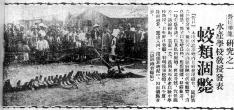 Sự thật việc chân long giáng thế ở Liêu Ninh năm 1934 - ảnh 2
